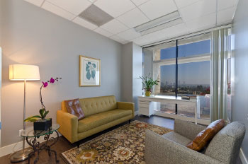 Office-with-a-view-at-1180-S-Beverly-Drive-Los-Angeles-CA.jpg