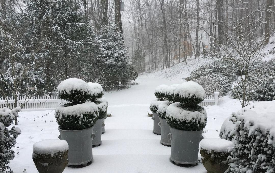 wintertopiaries.jpg