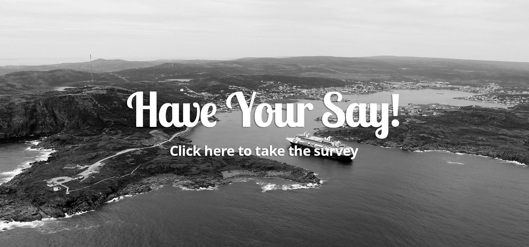 St Anthony Survey.jpg