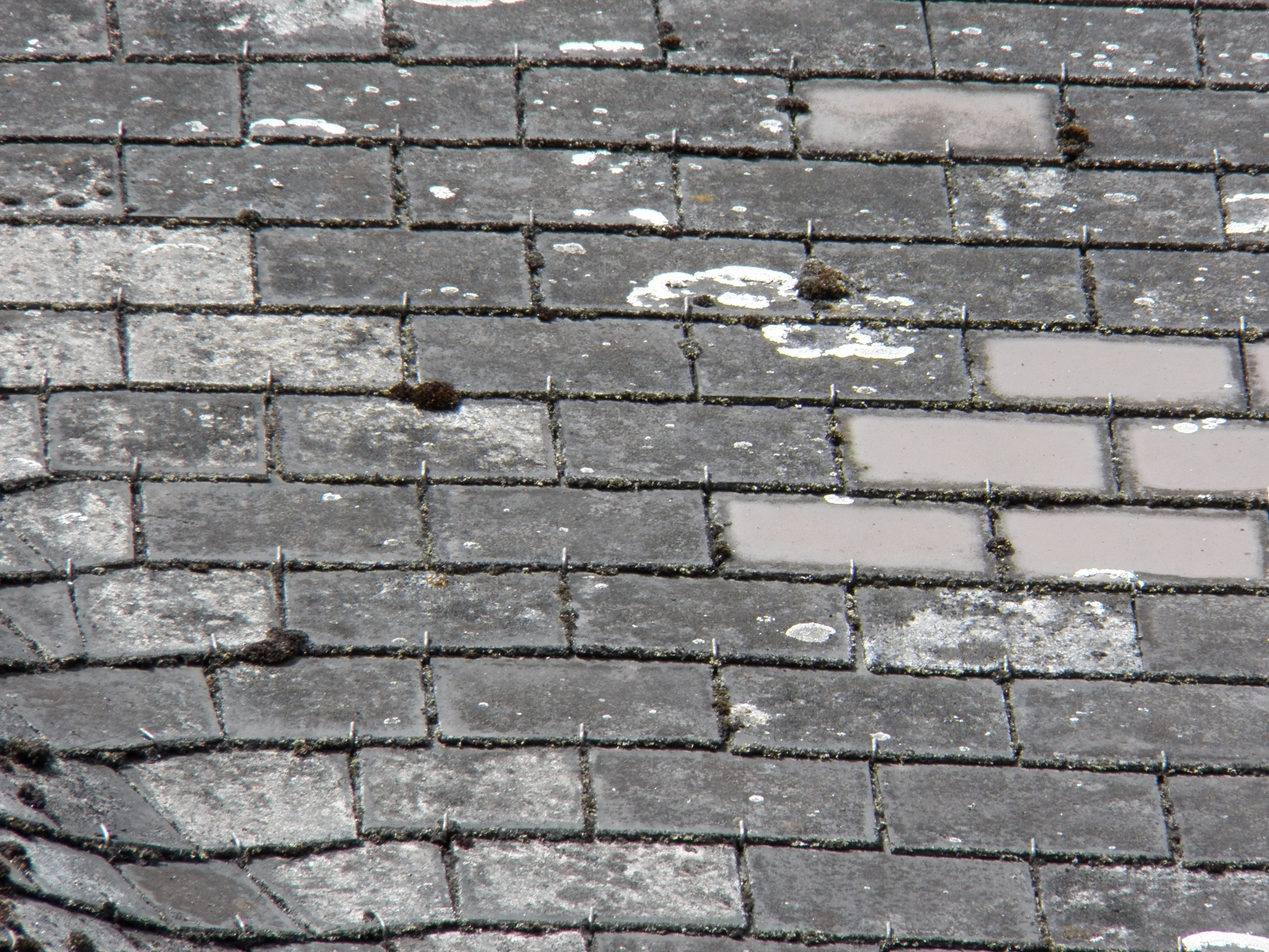 These roof shingles may look like slate, but they are actually made of asbestos fibre cement.