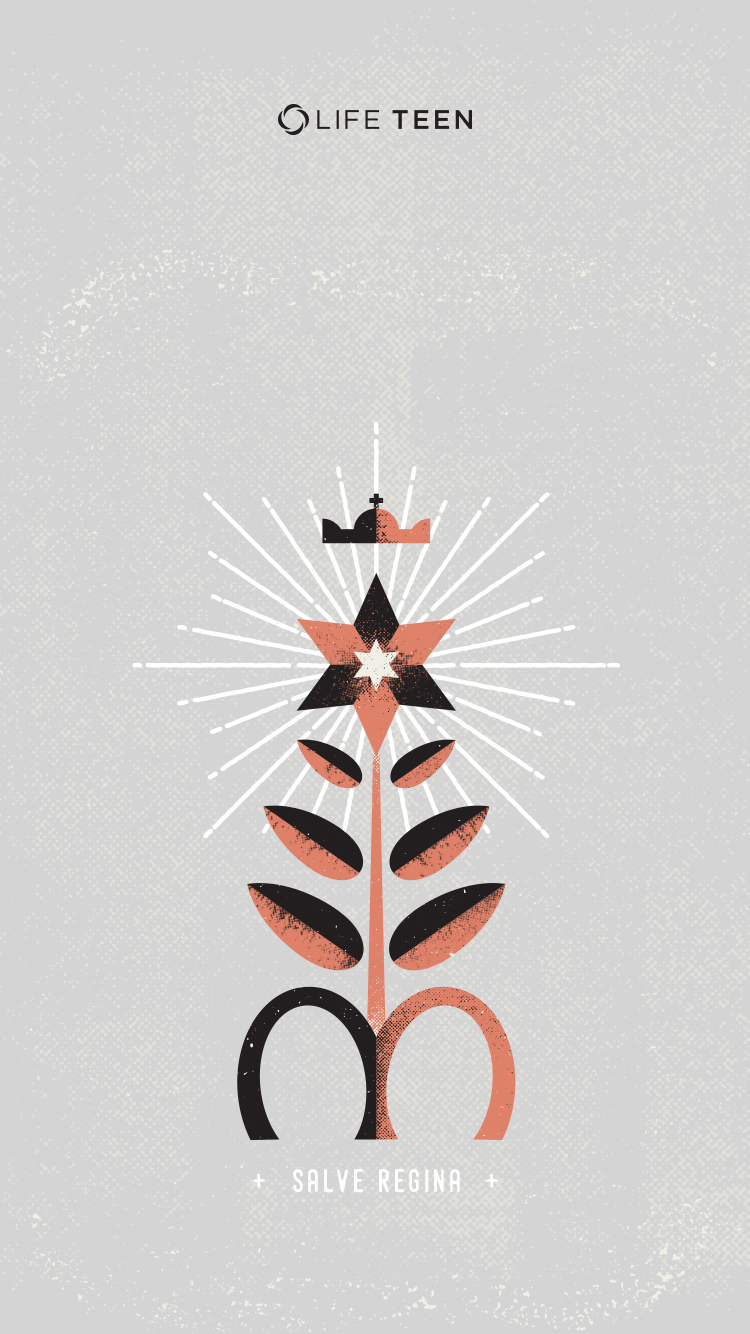 Salve-Regina-Star-Flower-Wallpaper.jpg