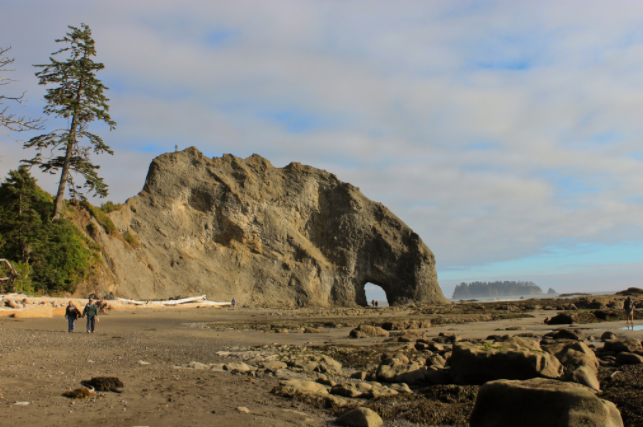 Beaches aren't just for surfing, swimming, and sun bathing. The northwest coast of Washington also offers some fantastic beach hiking options and Rialto Beach is the one beach hike you simply cannot miss out on. This simple four mild round trip is great for families as it will offer you some gentle climbs to cliffs overlooking the ocean while also taking you right down to the shore where you can search for shells, starfish and other ocean treasures.