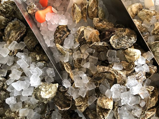 Whether you want one or a whole dozen,  we've got you covered. $1 oysters for happy hour Monday-Friday from 4 to 6 pm. * * * * #happyhour #chicagofood #chicago #zagat #eeeeeats #wickerpark #martini #cocktails #chicagoeats #cocktailbar #frenchrestaurant #frenchie #frenchfood #bucktown #chifood #cheers #infatuationchi