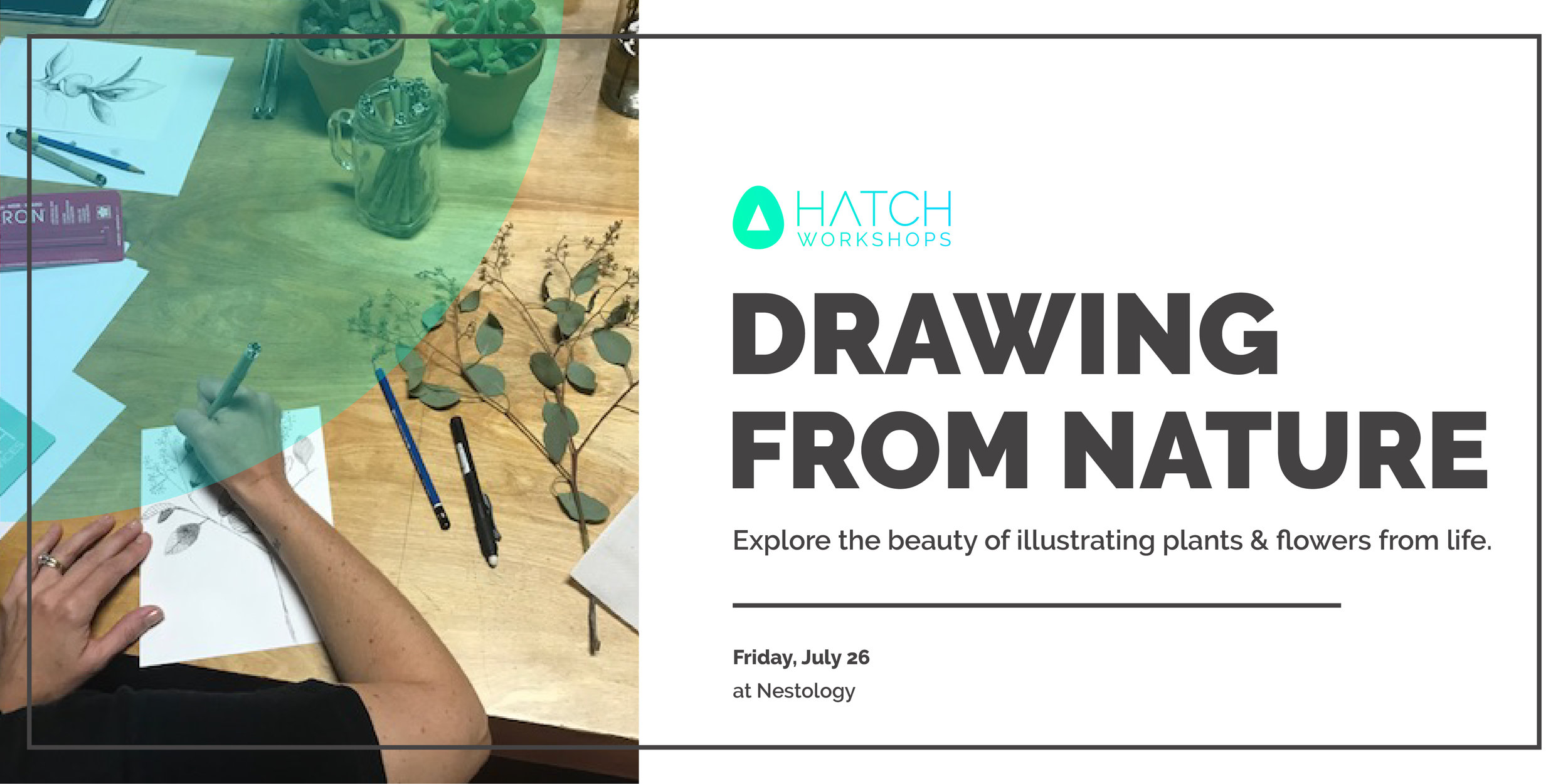 Drawing Nature 2019-lg.jpg