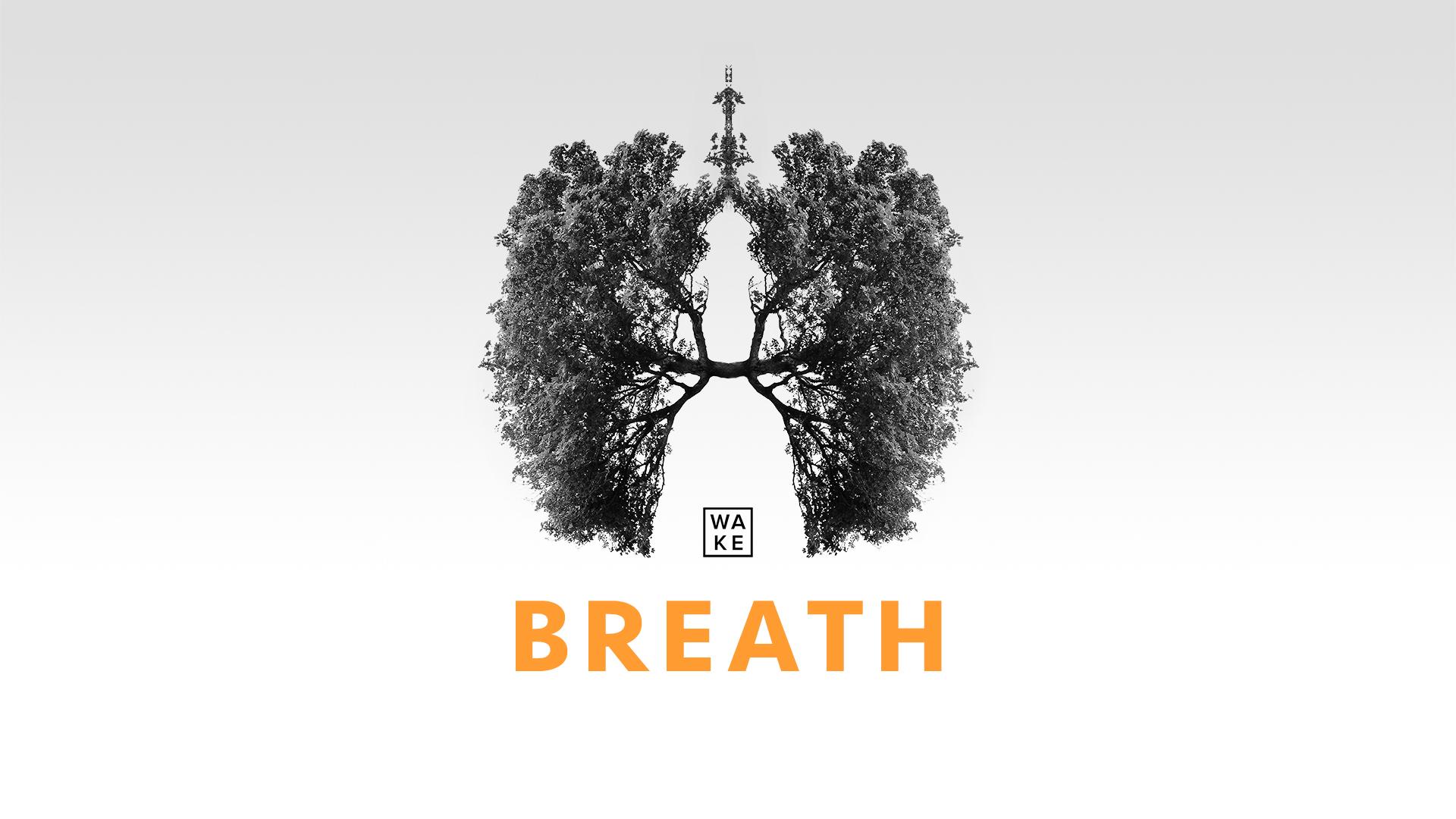WAKE_Breath_Series.jpg