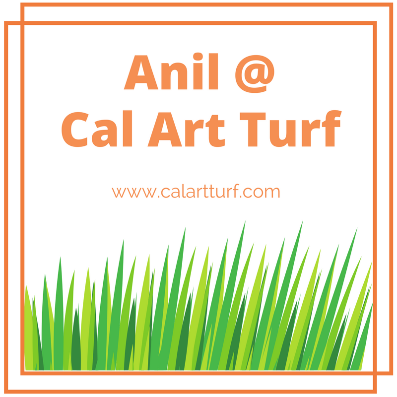 Anil @CAL ASTRO TURF.png