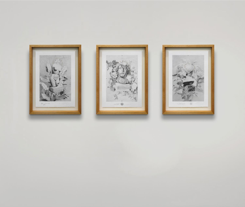 tasmanian-oak-frame-triptych-.jpg