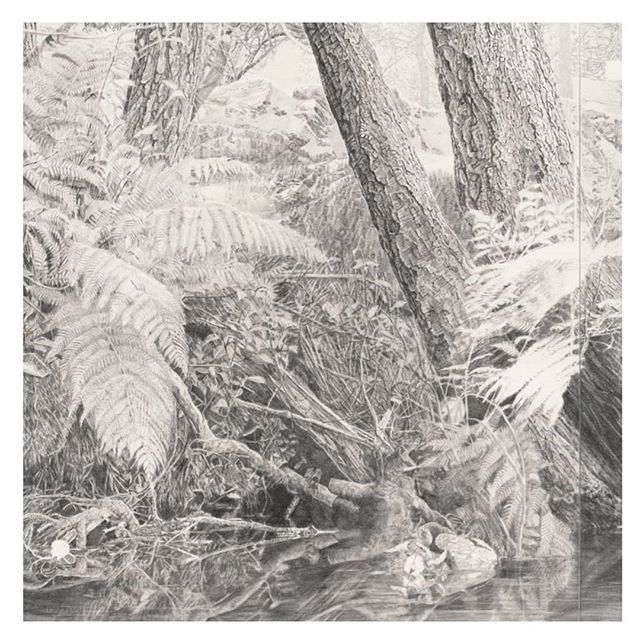 ⁣Today is the last day of the Dobell at @nas_au , it's been such an honour to hang amongst so many exquisite examples of contemporary drawing.⠀ ⠀  Detail from my drawing 'Fantasy of virtue / All things and nothing' ⠀ ⠀ #dobelldrawingprize2019 #dobelldrawingprize21 #dobellfinalists #nasdrawingfestival