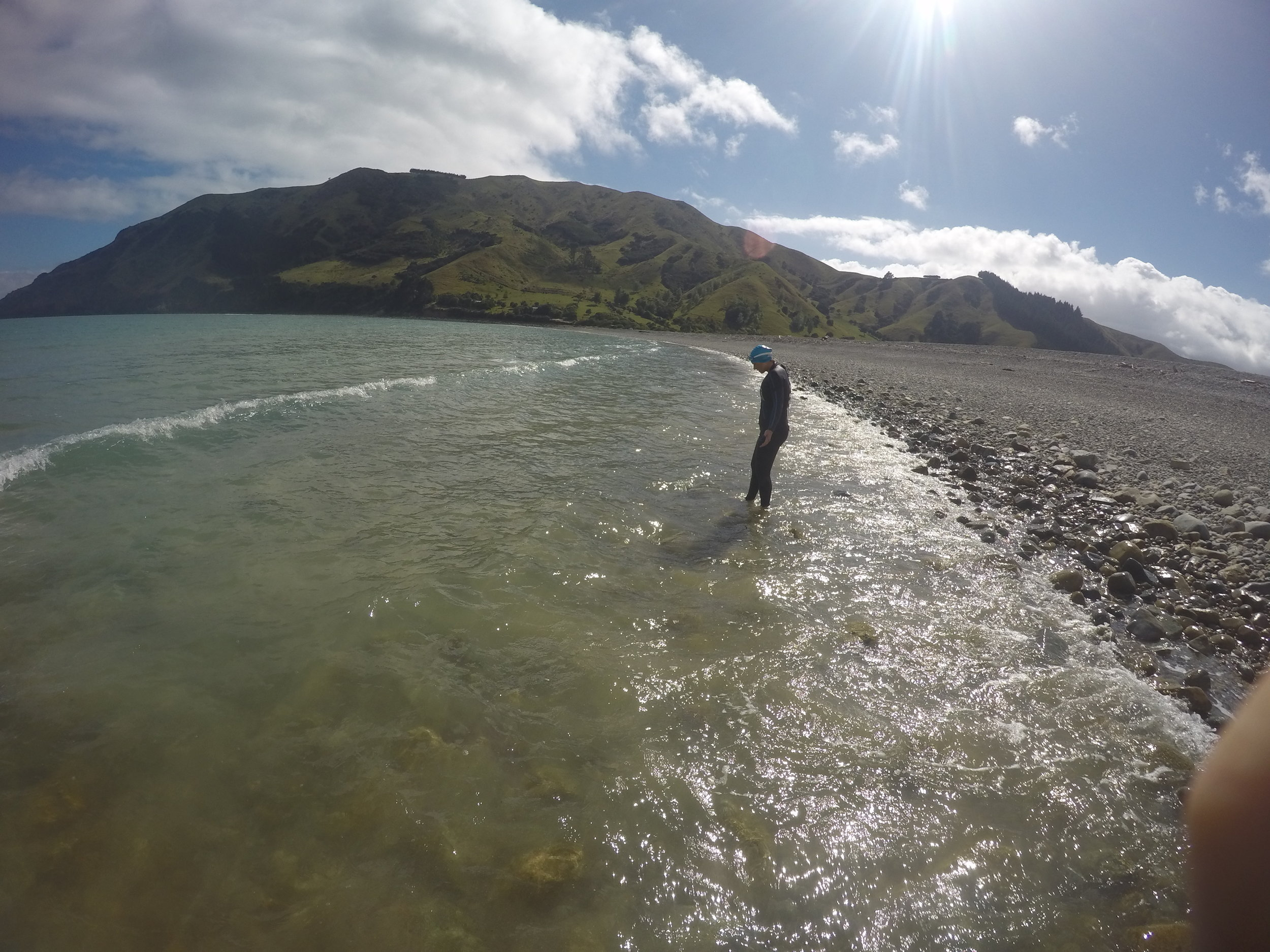 It's hard to kick those openwater jitters. Pictured here: Cable Bay, New Zealand
