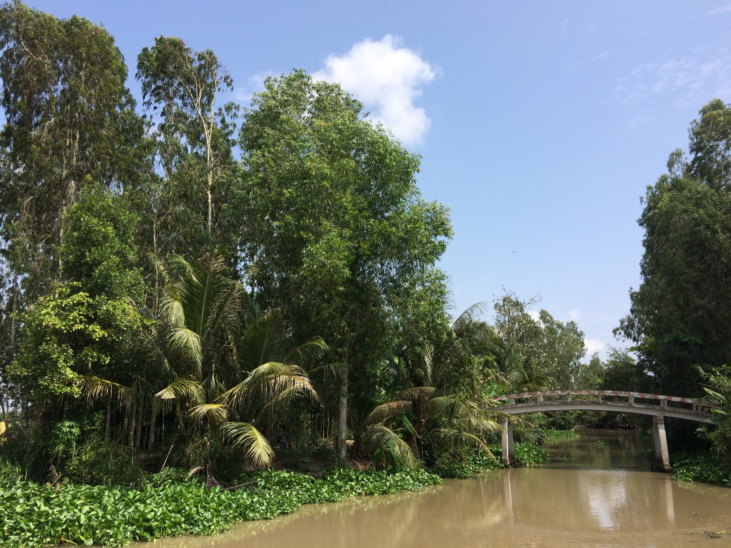 One of the more rider friendly bridges between Trah Vinh and Soc Trang