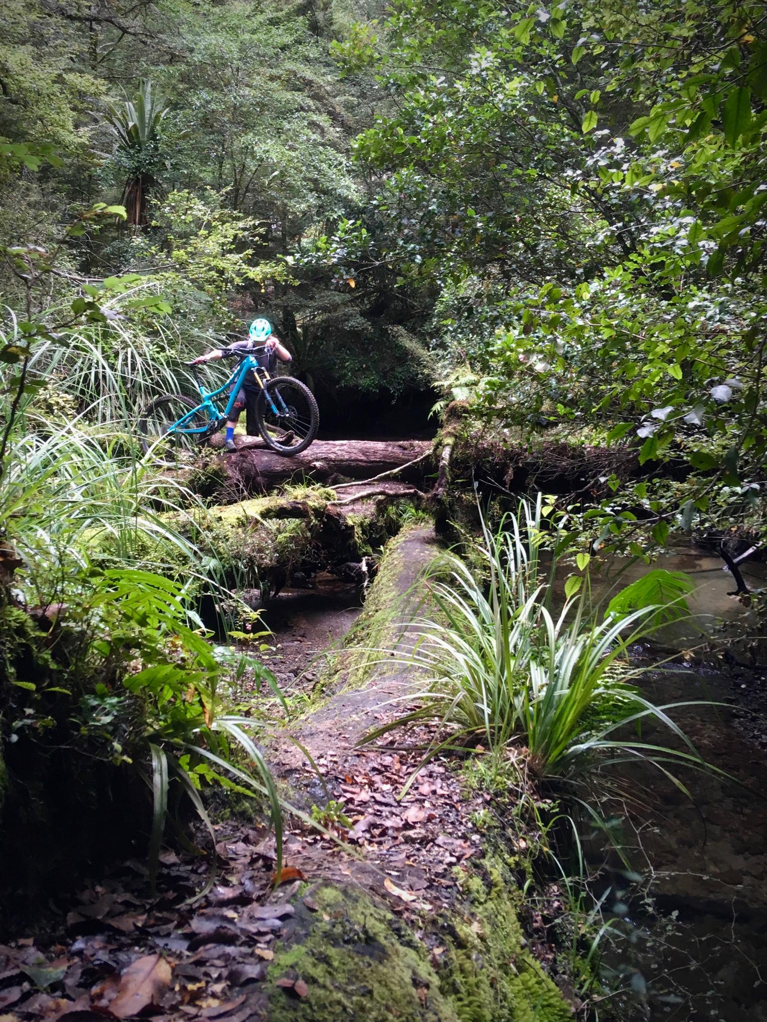 Te-Iringa-Bike-packing-trail-features.jpg