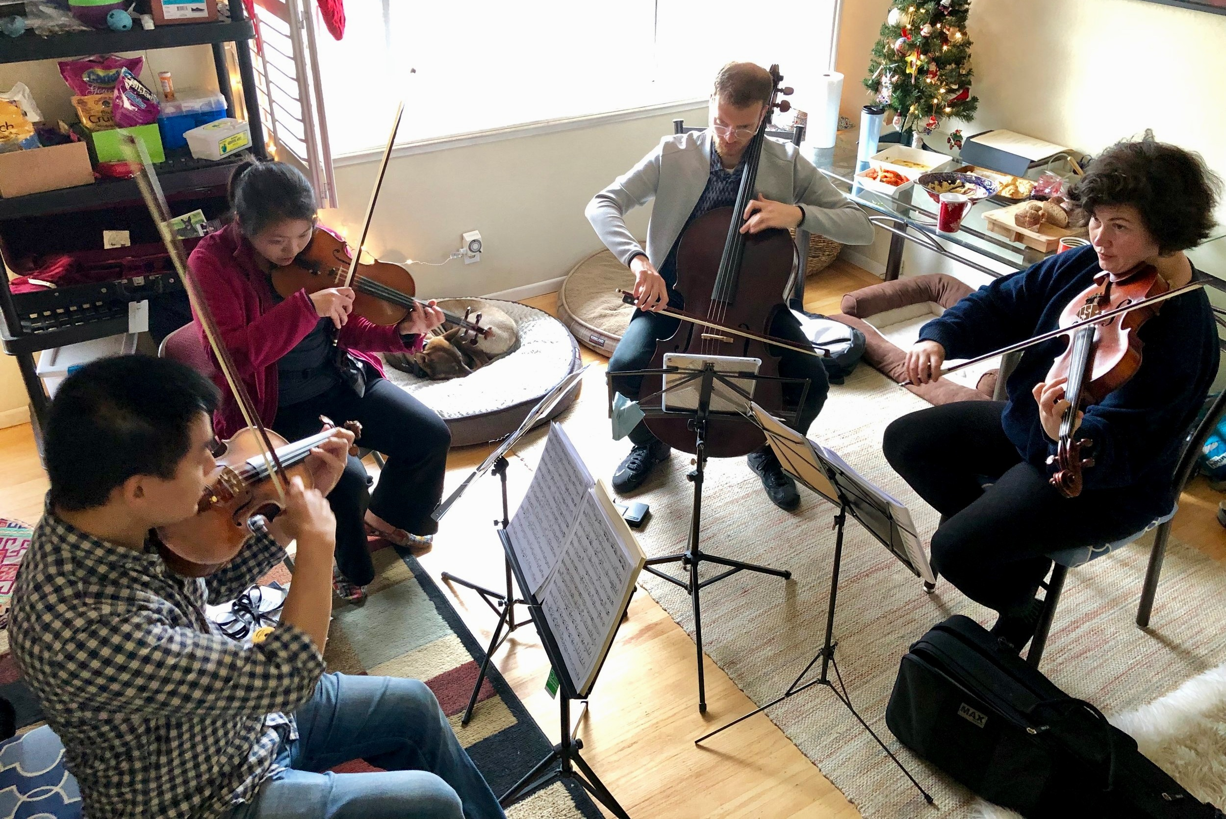 Our Quartet in rehearsal, complete with food and sleeping dogs. From left to right: Elbert Tsai, Rochelle Nguyen, James Jaffe, and Christina Simpson.