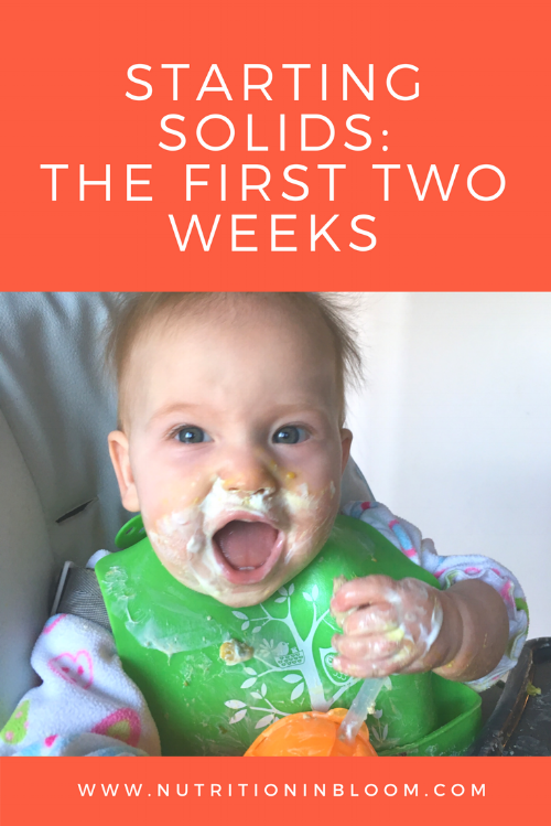 Starting Solids_Canva
