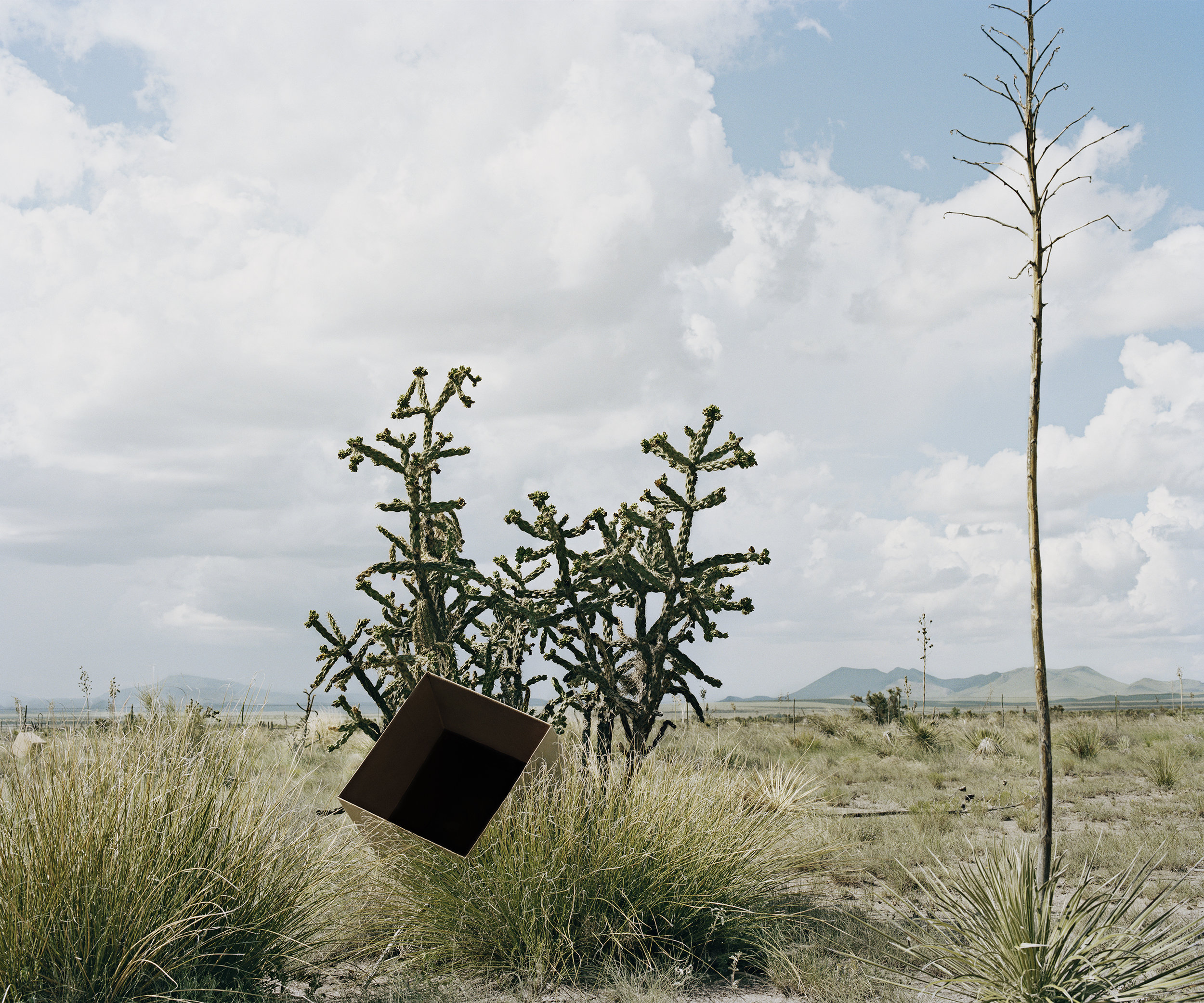 Single Cube Formation No. 3 Marfa, TX_Dawit L. Petros.jpg