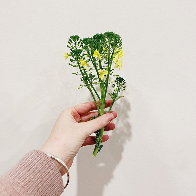 Veggie or Bouquet?