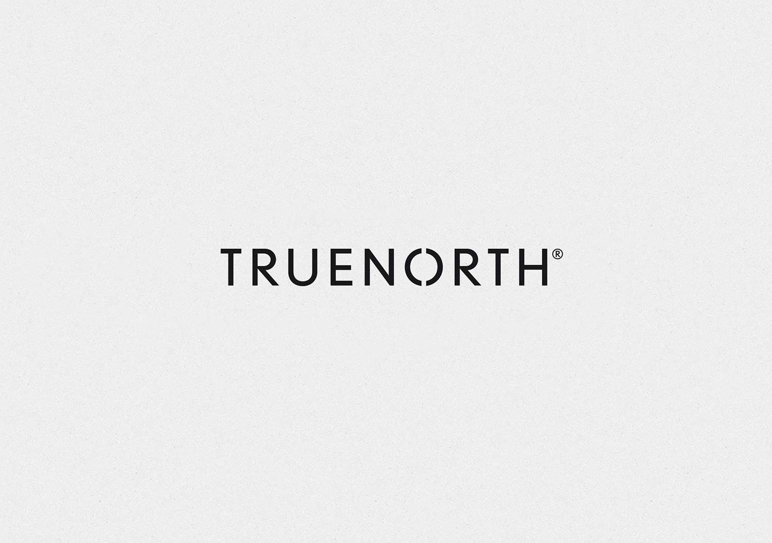 Truenorth / Visual identity