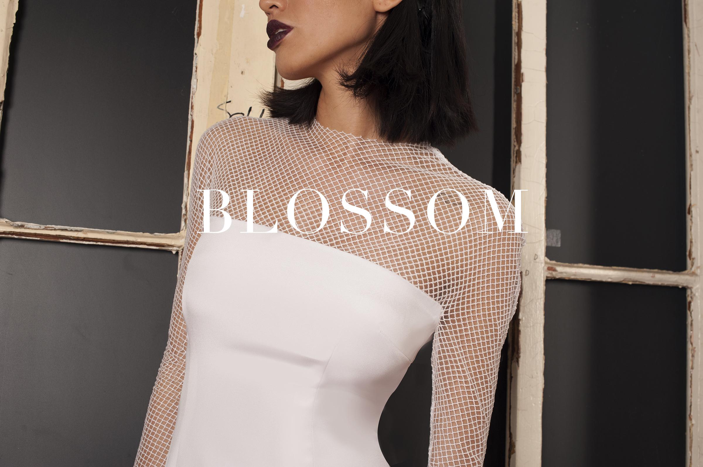 Lakum-Blossom-Title-Cover.jpg