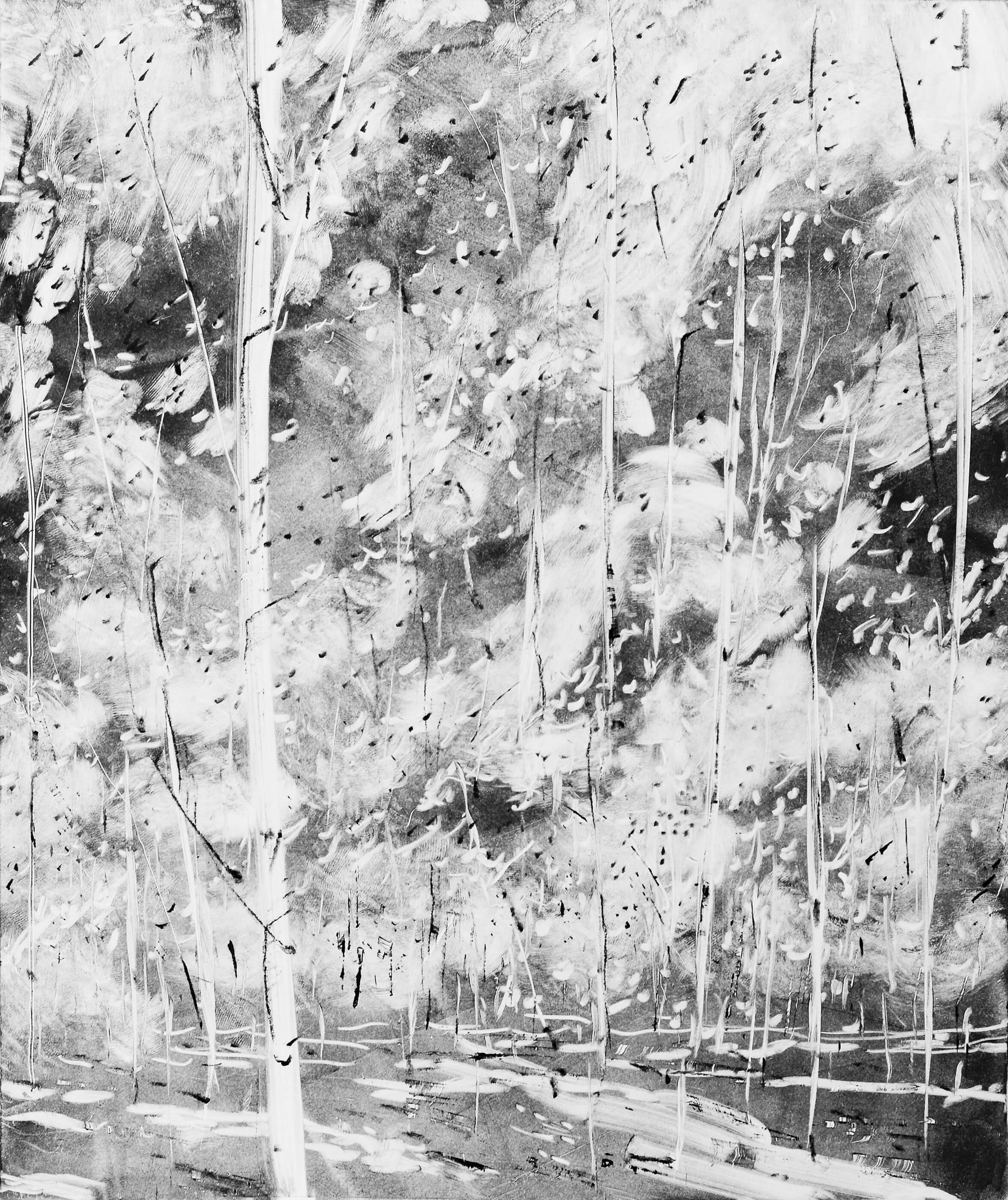 RHSK067 Breeze of Light through Silver Birch ( Monotype ) 37 x 31.5 cm