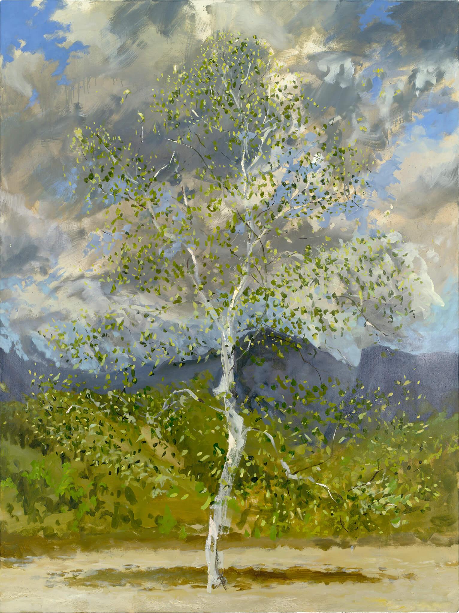 RHSK059 Silver Birch in June Light ( Oil on Linen ) 195 x 146 cm