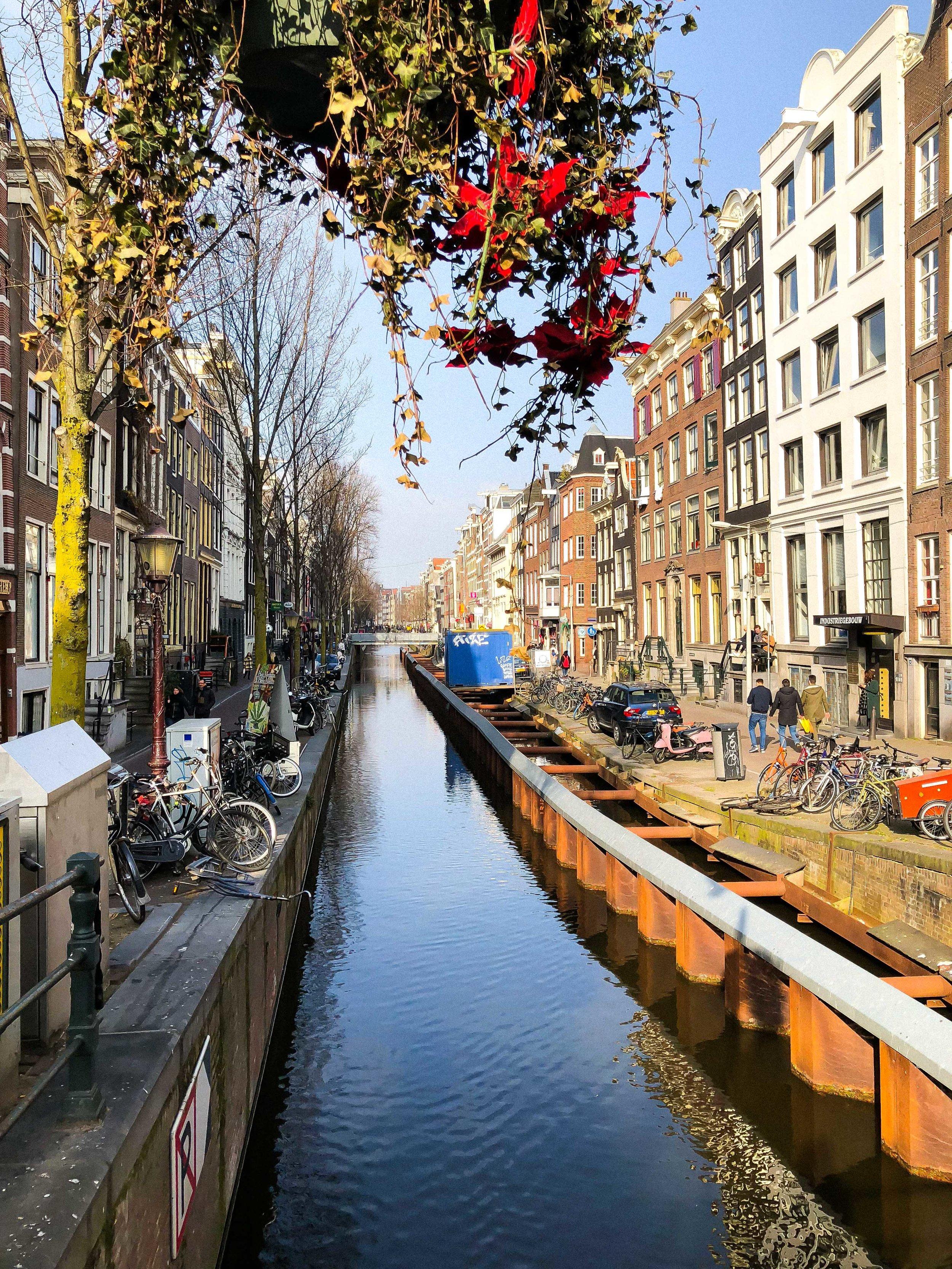 Amsterdam City Guide