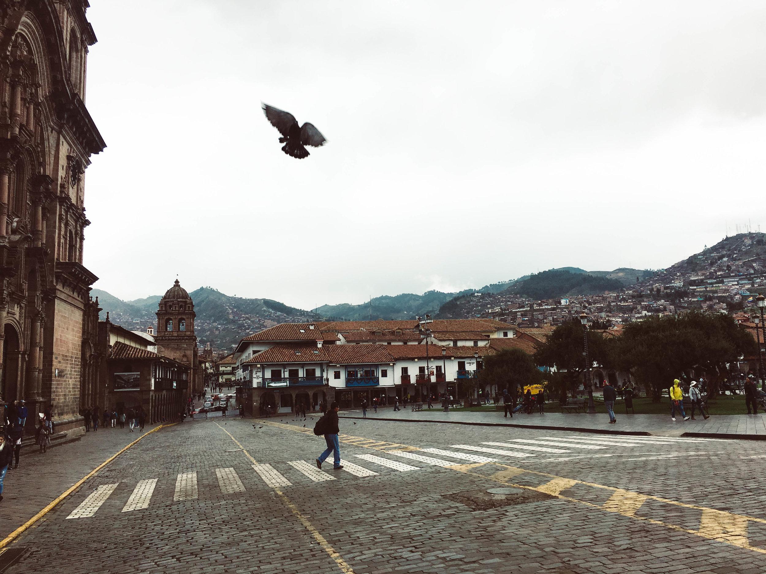 Plaza Del Armas Cuzco