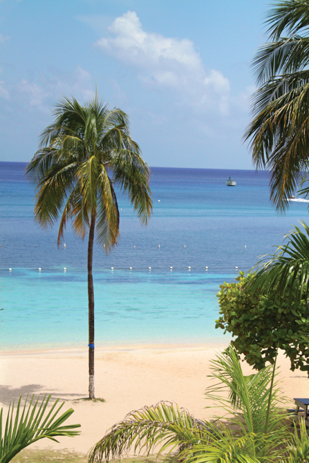 View from a room - Ocho Rios St. Ann