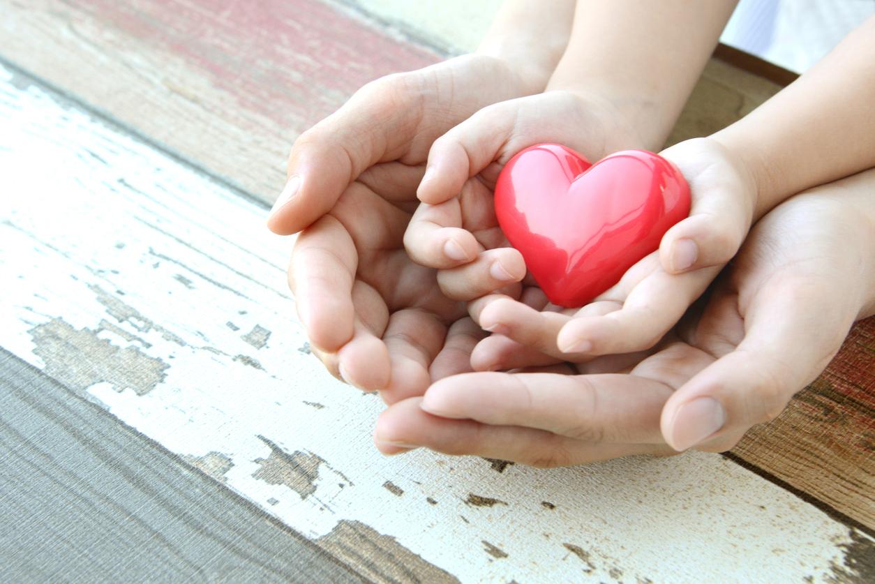 domestic violence; shelter; refuge; volunteer; elder abuse; assault; LGBT; threatening behaviour