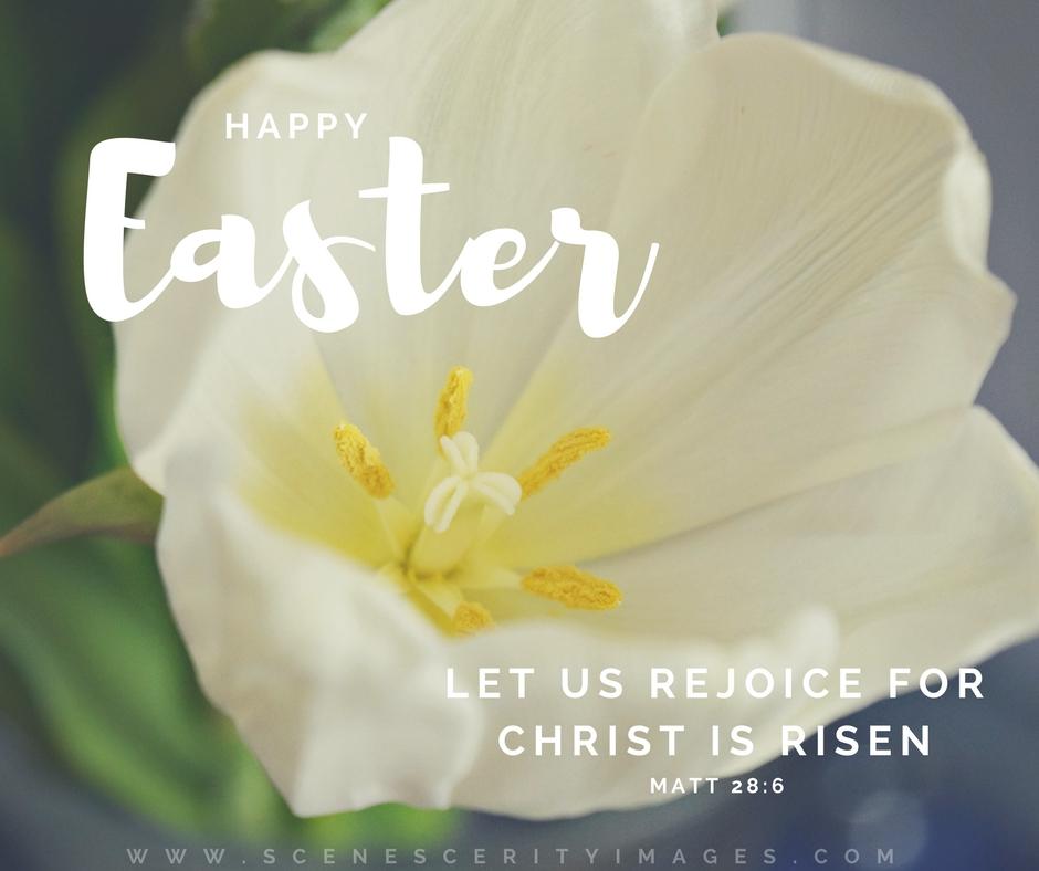 Easter White flower