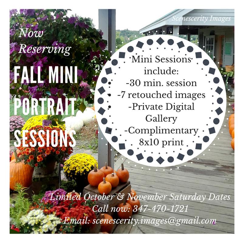 Fall Portaits Mini Session Photography Sale CT, NY