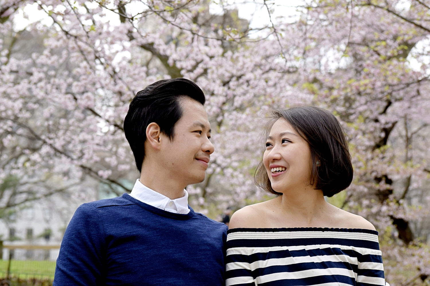 cherry blossom engagement photography central park  new york connecticut