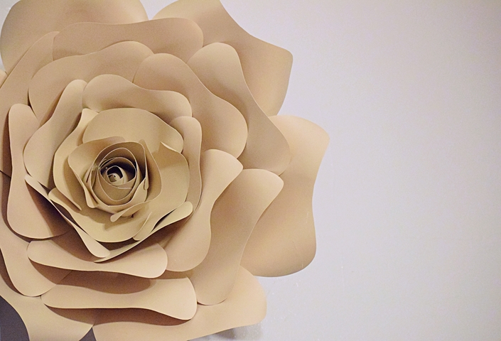 White Rose Paper Flower
