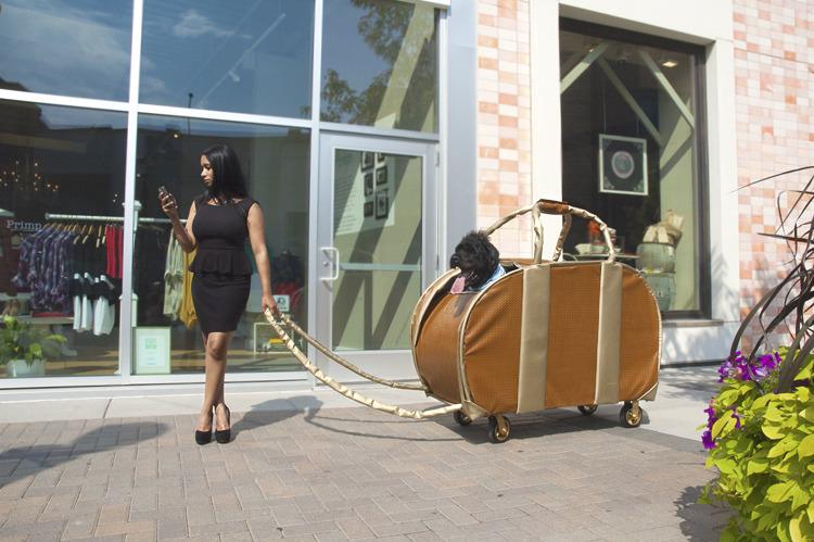 woman giant handbag dog