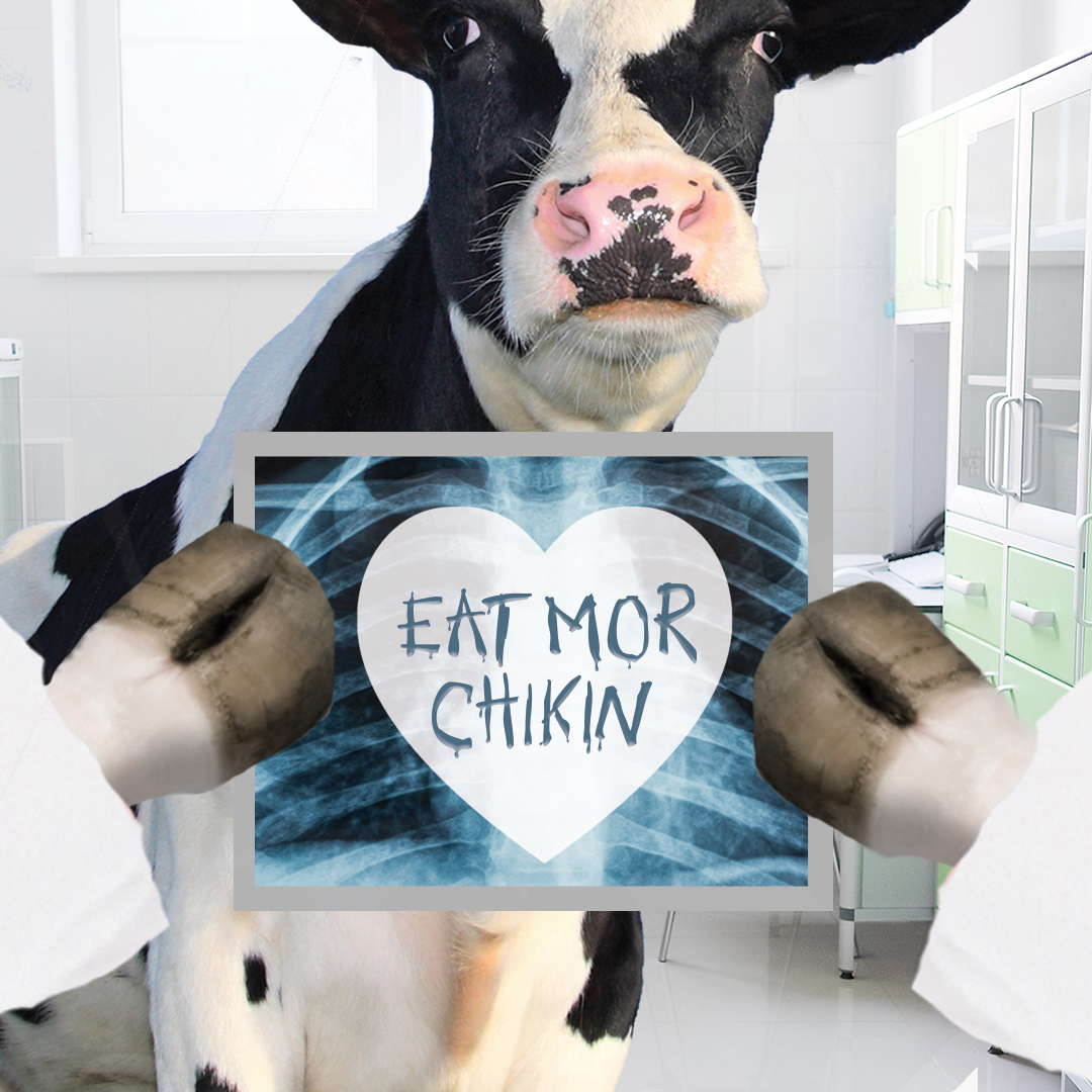 CFA-Feb-DrCow_Xray.jpg