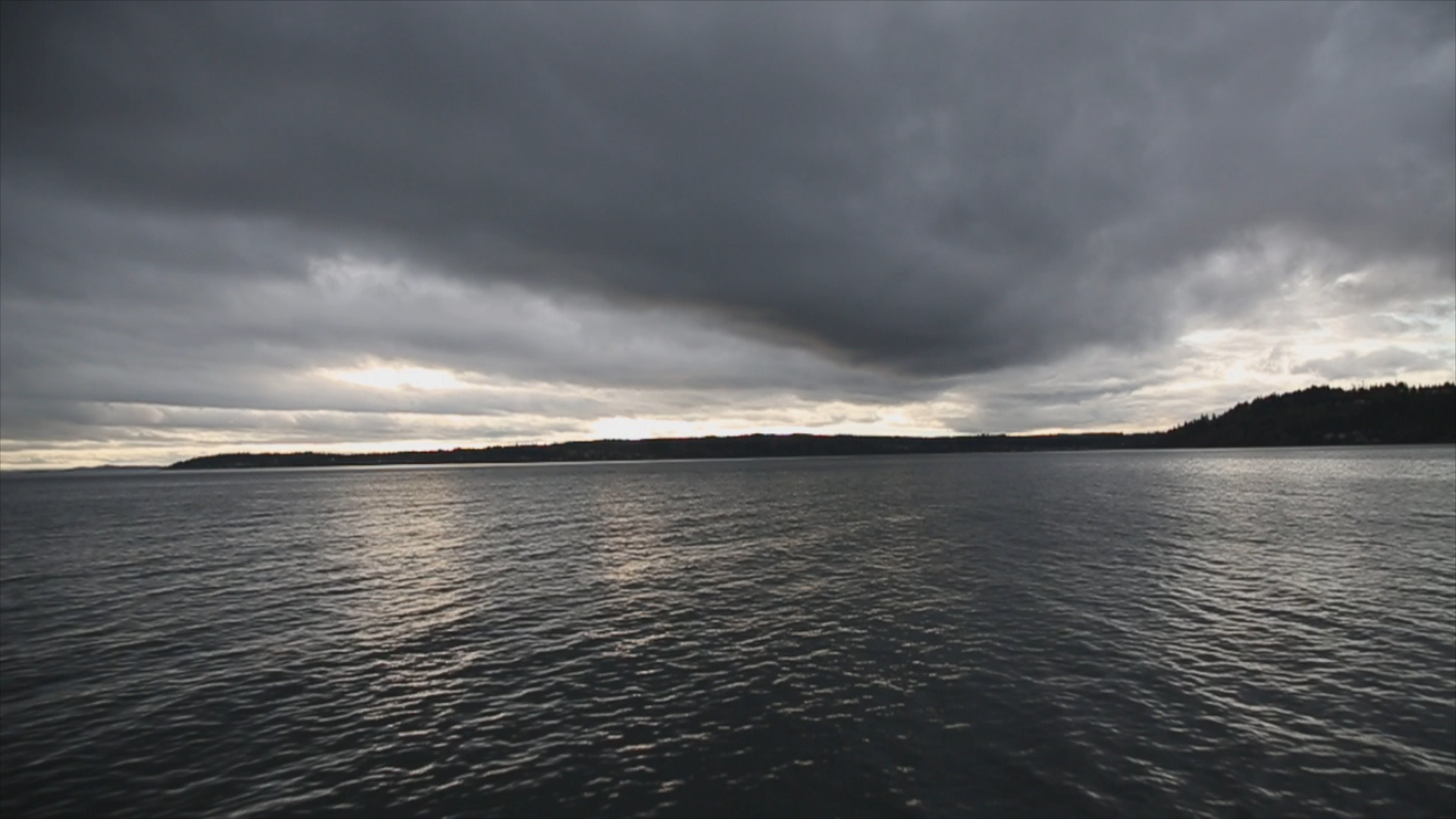 Puget Sound - heading to interview former NFL player, author and activist Dave Meggyesy (January 2013)