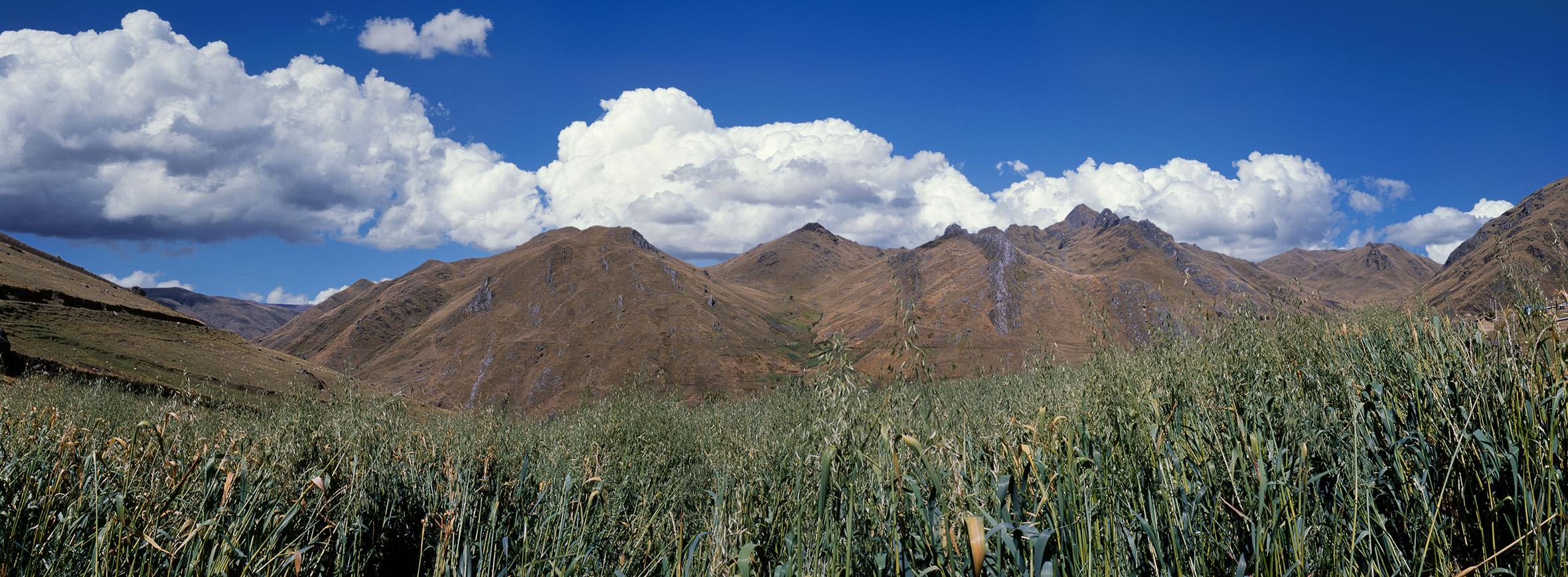 Ayacucho, Uchuraccay. 23 de enero de 1983.