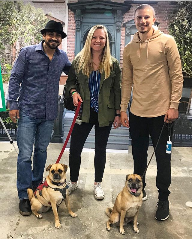 "Petflix and chill at it's finest 😍 George and I got to meet his distant puggle cousin @itsbrunoshow,  @slick_naim and @actoranthony from the @netflix show ""It's Bruno""!"