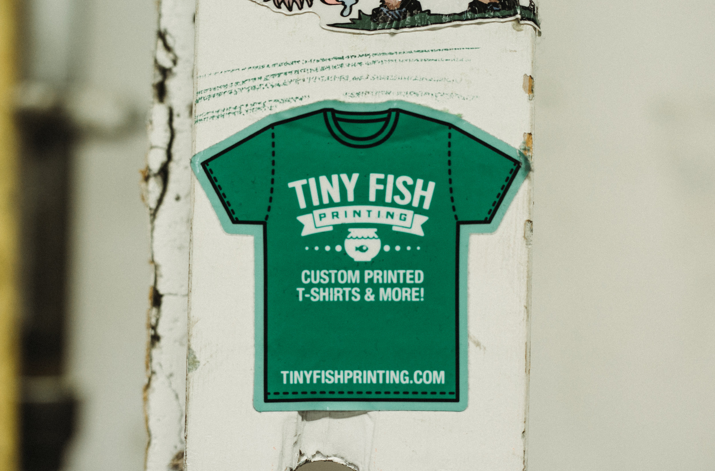 tinyfish (26 of 52).jpg