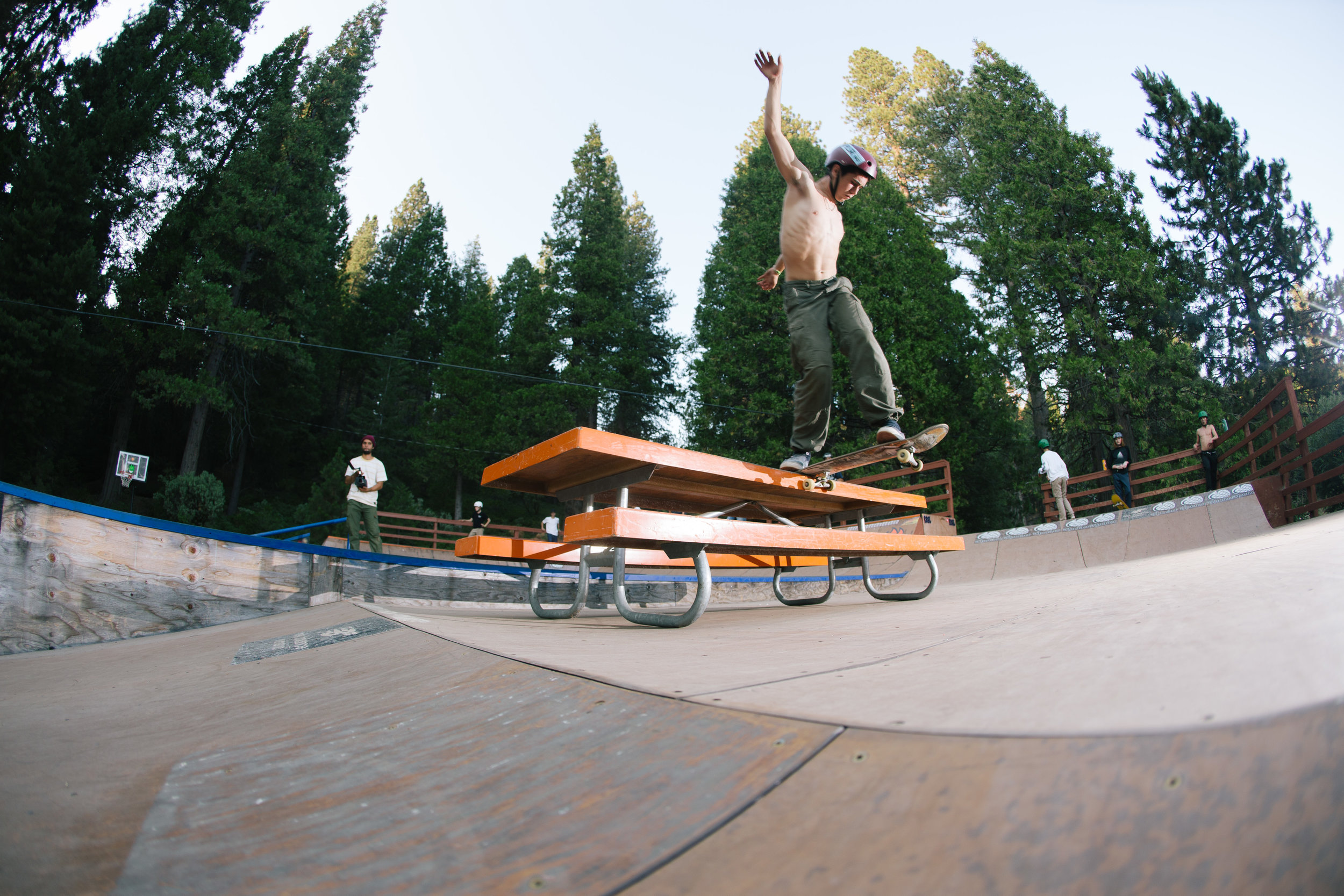 SHRED THE PARKS