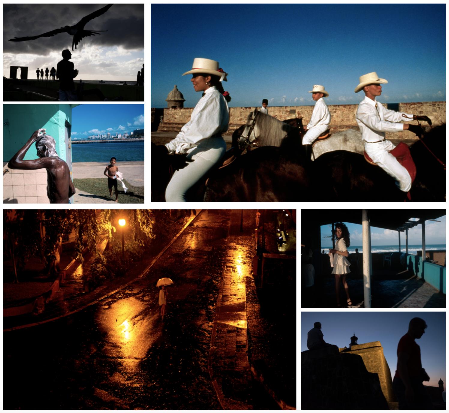 哈維最著名的作品為其在拉丁美洲的照片,照片鮮豔濃厚、構圖複雜精準。(取自哈維個人網頁)
