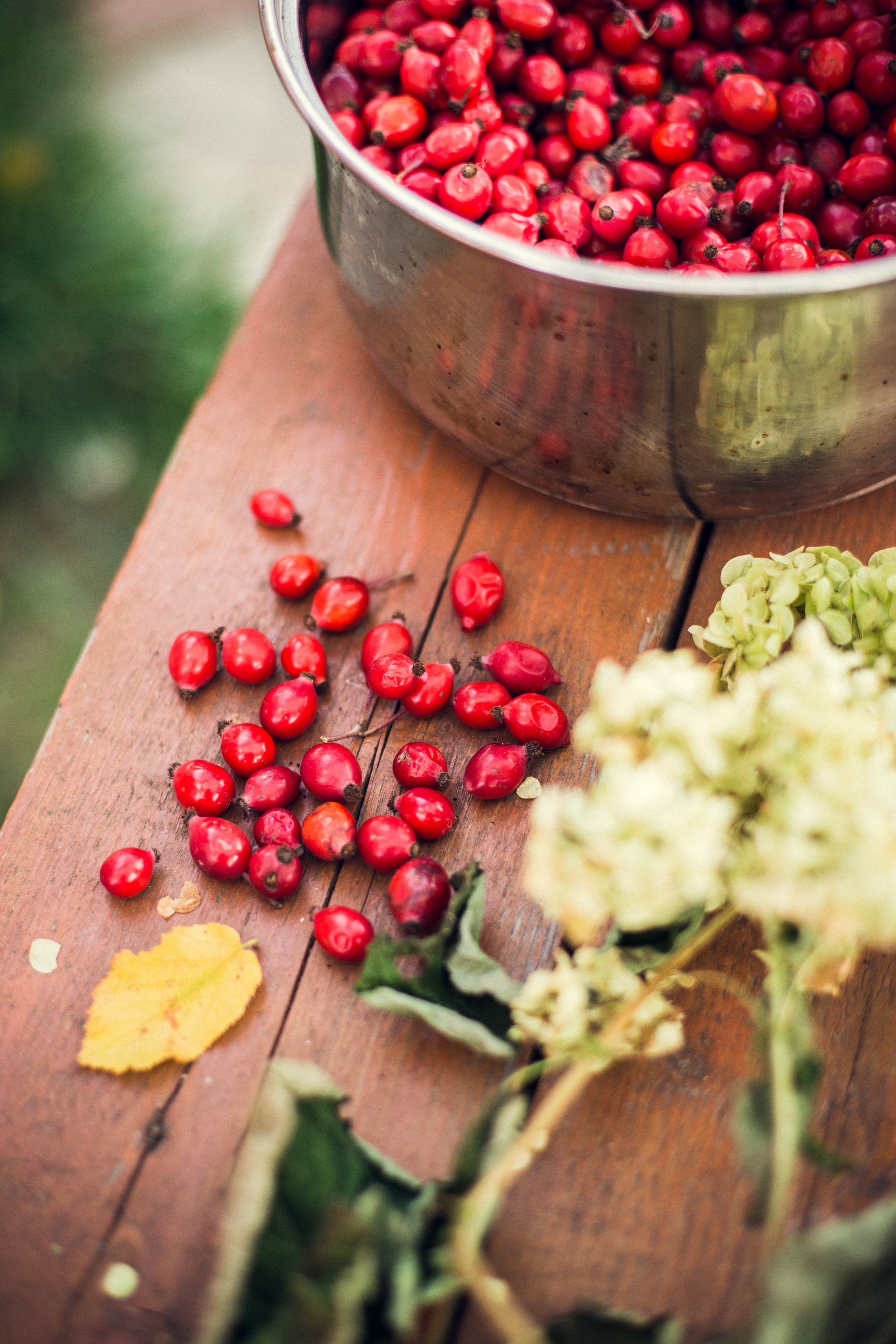 Rosehip Oil - is derived from the Rosa Canina bush where the oil is extracted directly from the fruit & seeds. It has multiple benefits when put directly onto the skin. We like to specifically use it on the face.Here's why:+ helps reduce fine lines & scars+ boosts collagen production+ hydrates & moisturizes+ promotes skin regeneration(bye, bye, acne scars!)+ prevents blemishes & acne+ reduces inflammation caused by eczema, rosacea, etc.+ protects against sun damageHave we convinced you yet? Try it out. Put it on every night after washing your face & using toner.HU approved Brands: Radha Beauty, Kate Blanc
