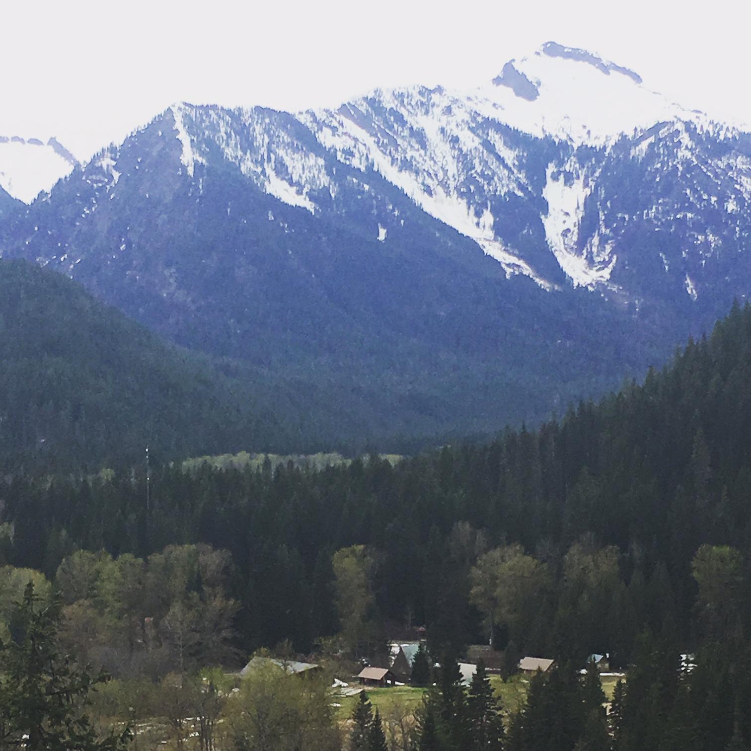 Tall Timber Ranch