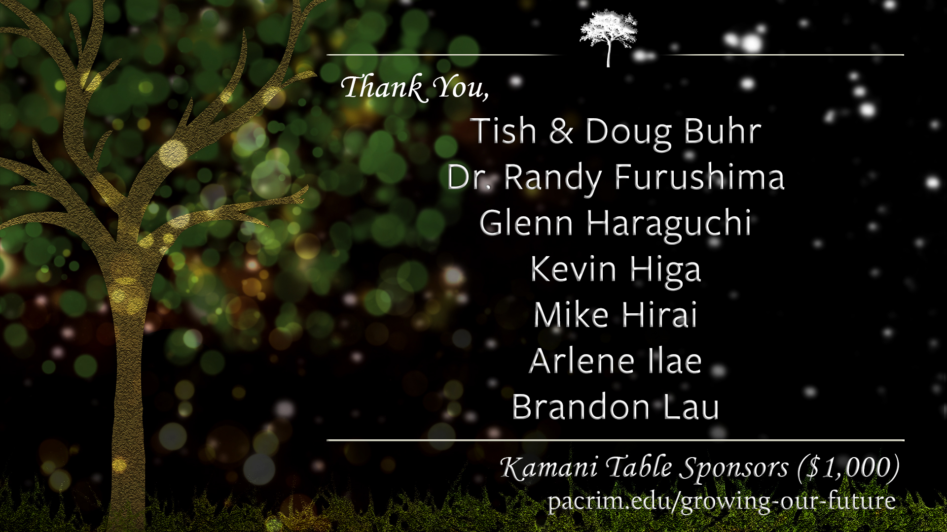 Slide13-Thanks-Kamani1.jpg