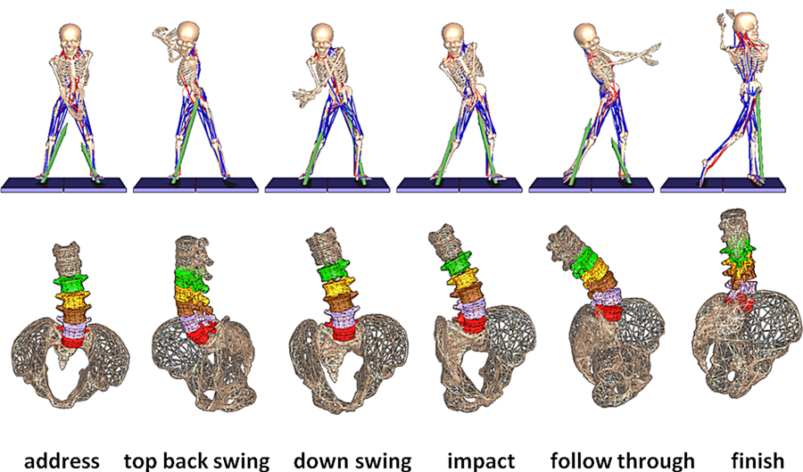Kinematics of the low back during the golf swing.