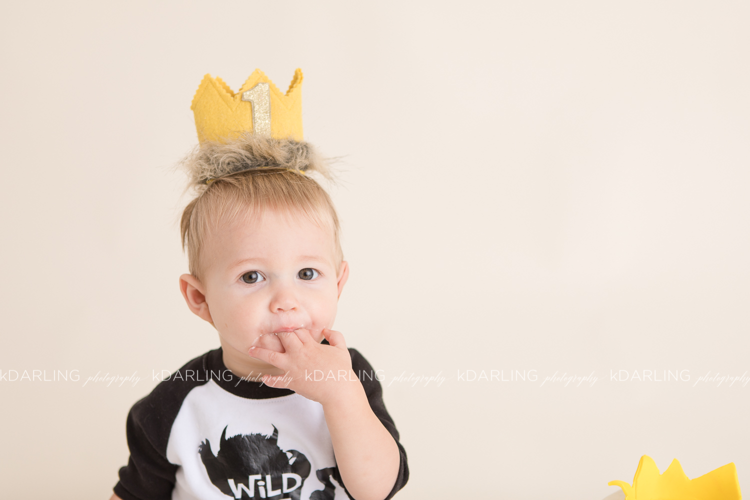 Family-pictures-Champaign-county-il-photographer-one-year-old
