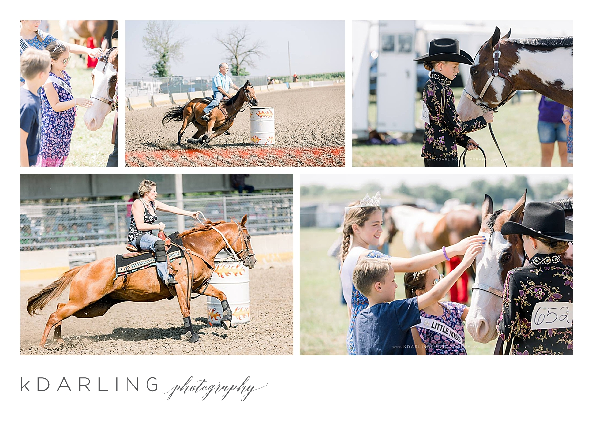 Fisher-Fair-in-Champaign-County-IL-Carnival-Livestock-horse-show