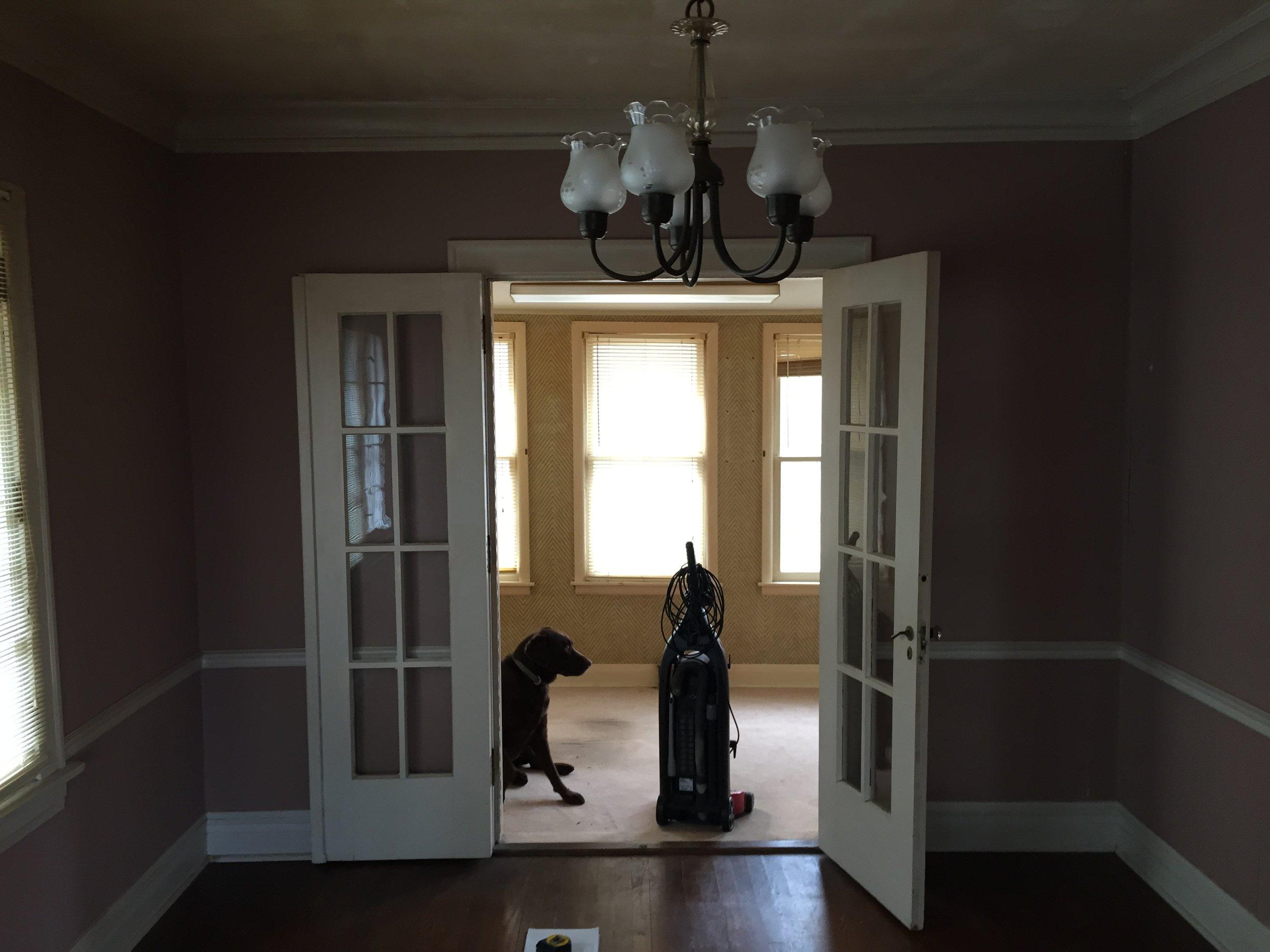 Before - Monty in the door
