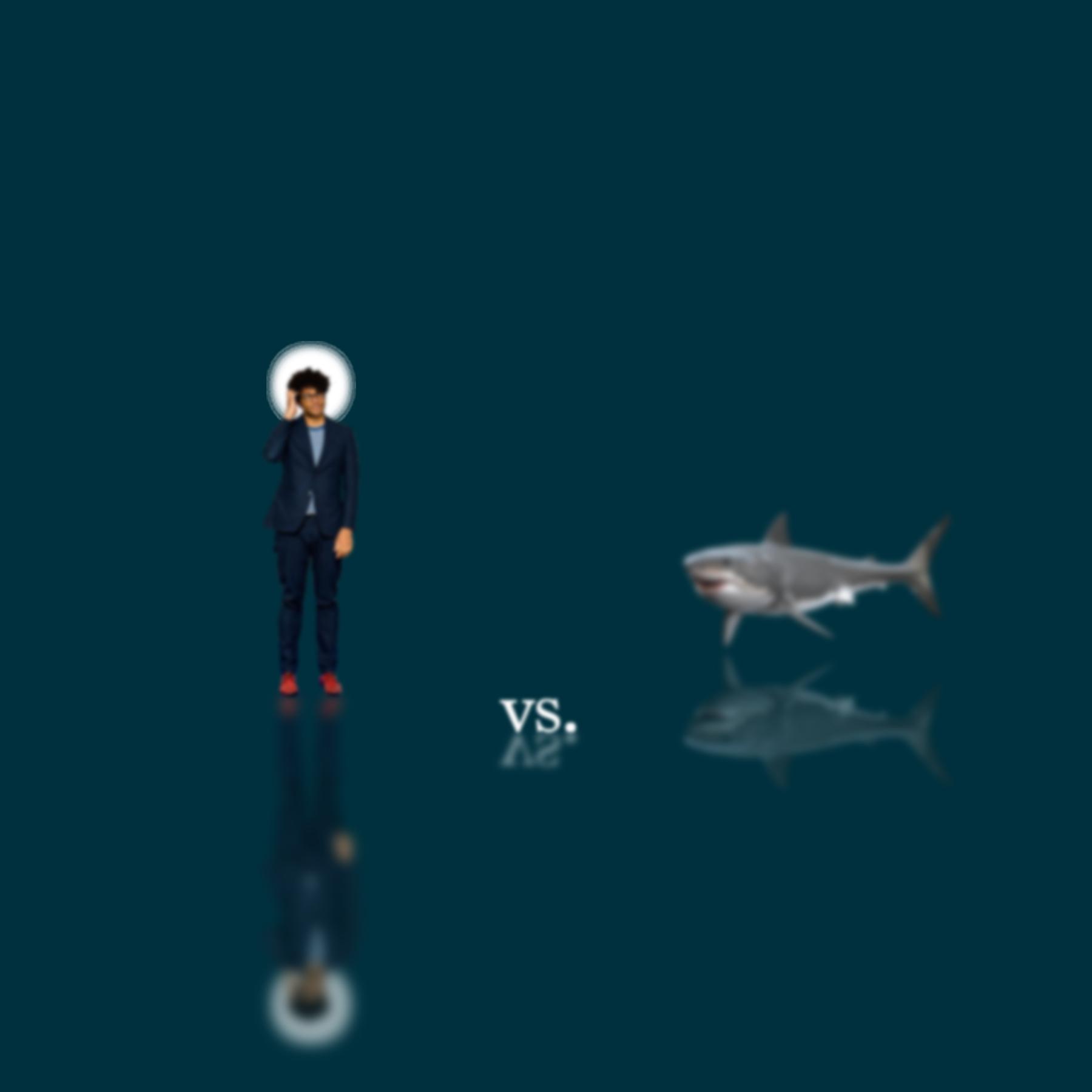 St. Ayoade vs. A Shark