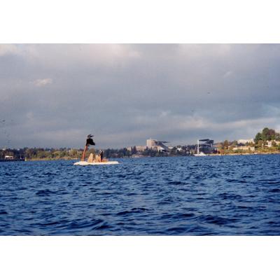 island_7.jpg