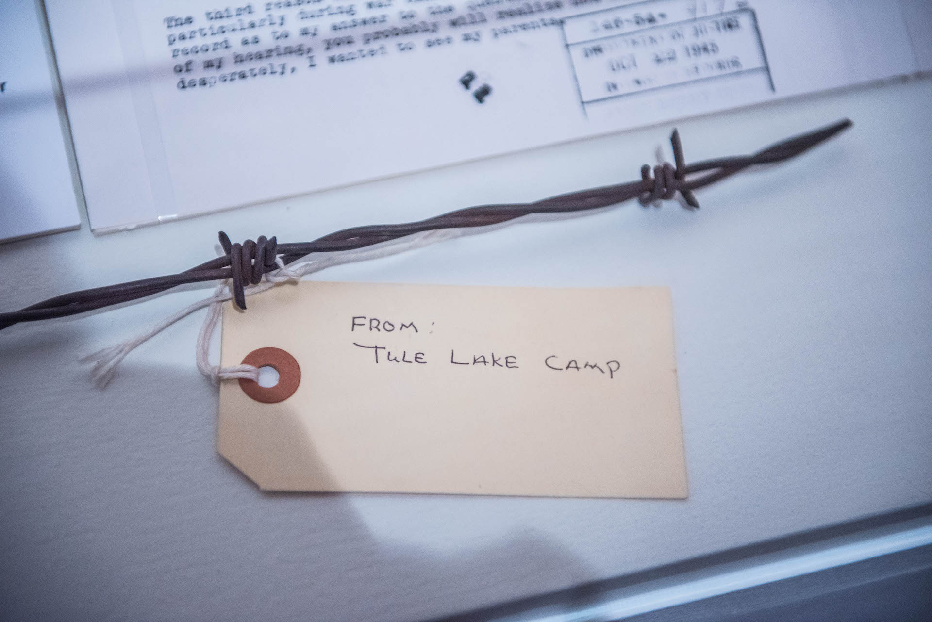 A piece of the barbed wire from Tule Lake where Takei and his family were interned.