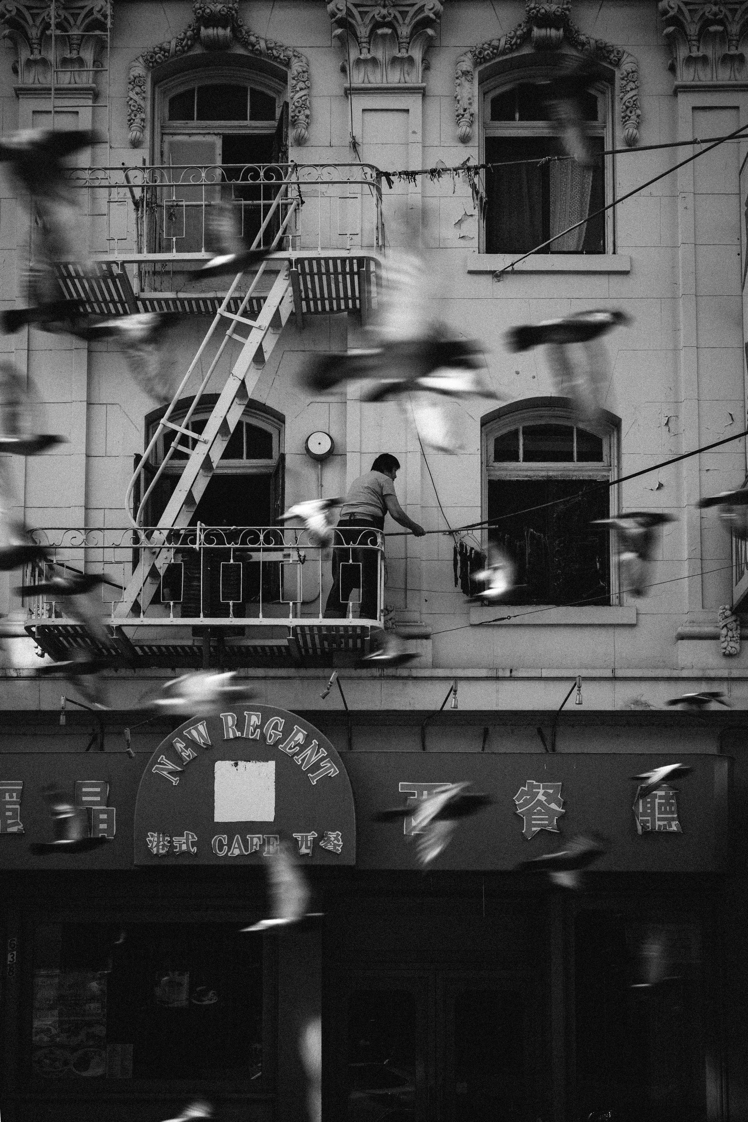 chris-wong-chinatown-4.jpg